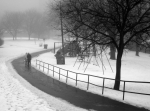 1375260_toronto_in_winter