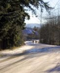 83991_icy_road_3
