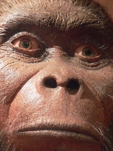 Book Review: Meeting PrehistoricMan
