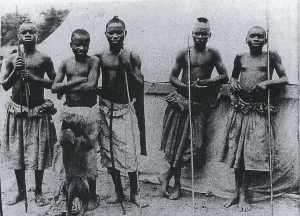 pygmies