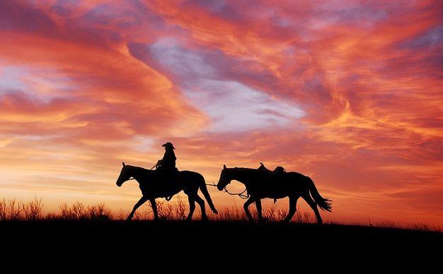 johnstone westerns